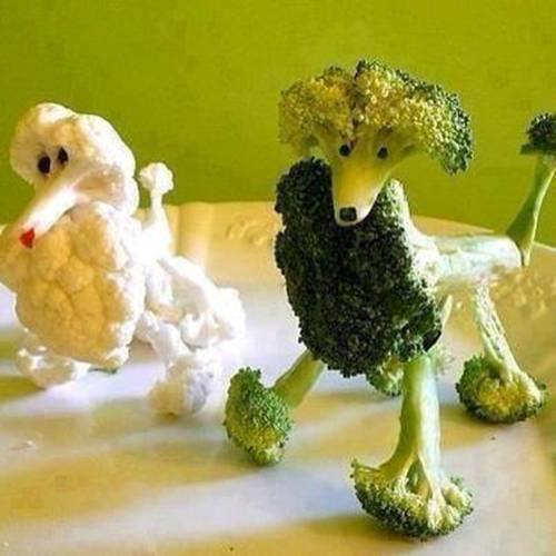 Broccopoodle