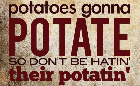 You say Potato, I say GET RICH QUICK!