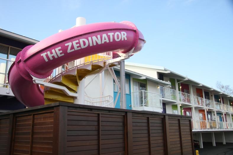 The Zedinator